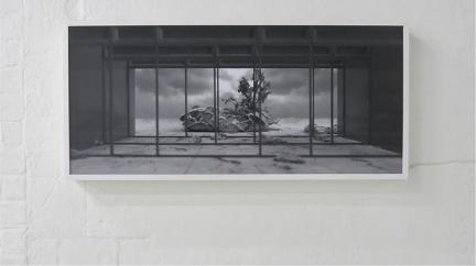 lightbox, 2012